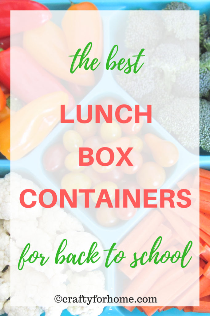 Functional and durable food containers for school lunch boxes, meal prep, or storing any leftover | craftyforhome.com | #lunchboxes #foodcontainers #foodstorage #backtoschool