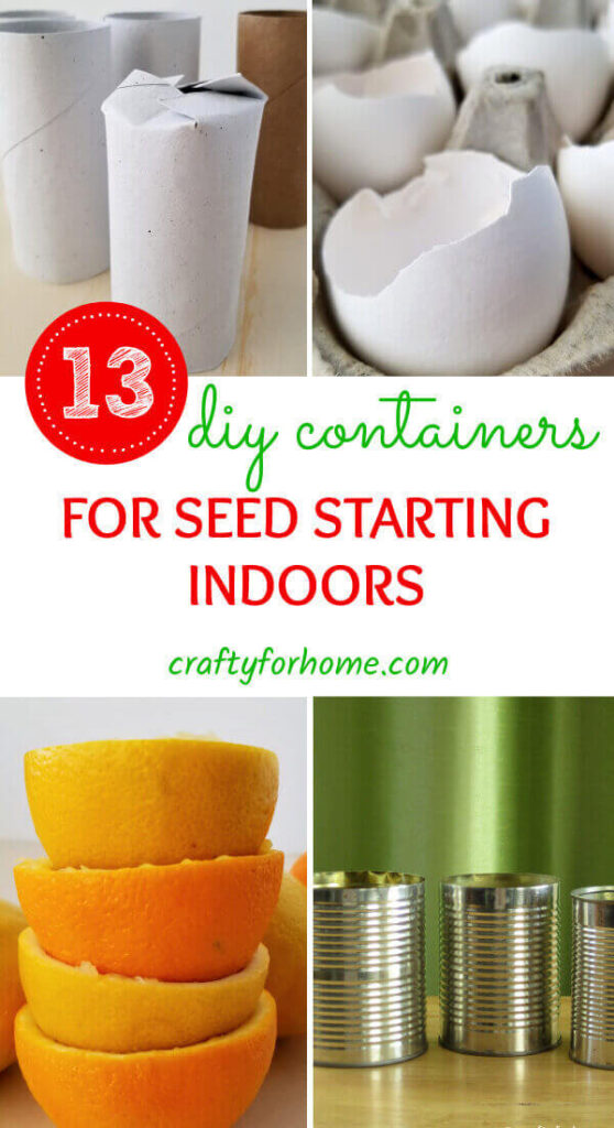 DIY Container For Seed Starting Indoor