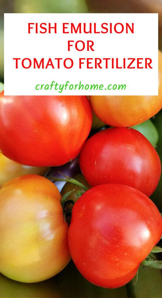 Fish Emulsion For Tomato Fertilizer